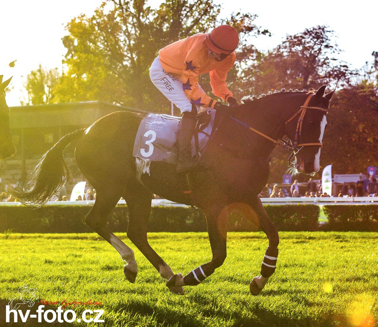 f-19-36_0108.jpg